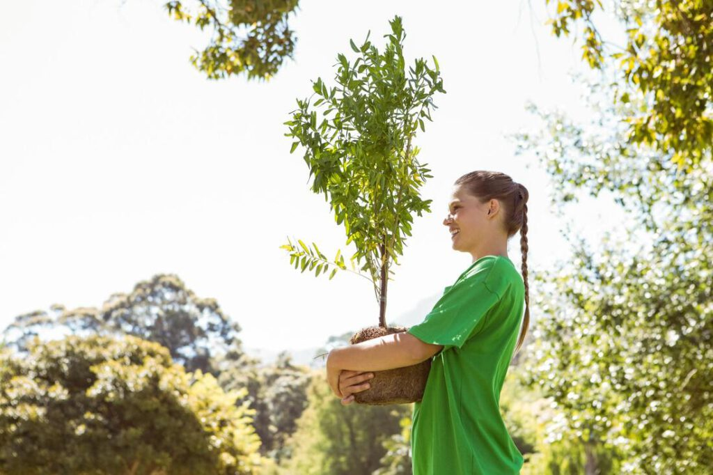 grand-prairie-tree-service-tree-planting-moving-2_orig